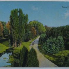 Craiova - Parcul Bibescu - neexpediata, aprox 1920