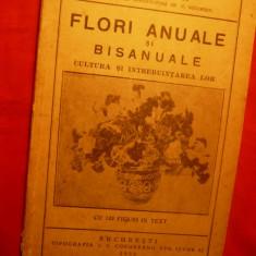 N.IACOBI - FLORI ANUALE SI BISANUALE - 1932 - Carte Hobby Gradinarit