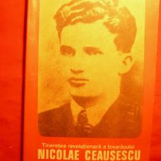 Tineretea rev.a tov.NICOLAE CEAUSESCU - de O. Matichescu - Carte Epoca de aur