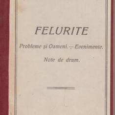 Ion Petrovici / Felurite : probleme si oameni ... (1928)