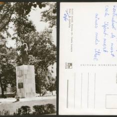 SATU MARE - Statuia Dr.Vasile Lucaciu