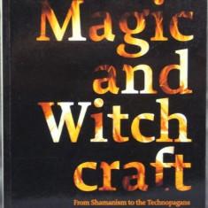 Magie & vrajitorie. De la samanism la tehnopagani Witchcraft - Carti Samanism