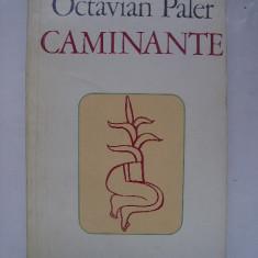 Octavian Paler - Caminante (1980)
