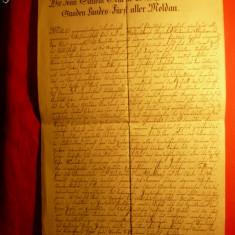 Cerere de Pasaport pt.Ioan Sandu Sturza -Domn al Moldovei-1826 - Pasaport/Document