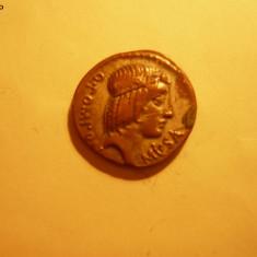 COPIE - DENAR - REPUBLICAN -POMPONIUS MUSA - Moneda Antica