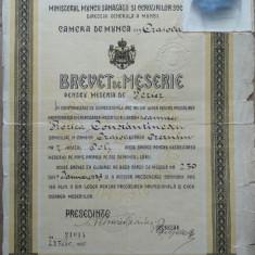 Brevet de Meserie, Perier, Craiova, 1940