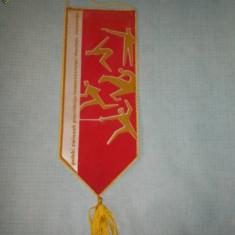 56 Fanion - POLSKI ZWIAZEK (POLONIA -PENTATLON)