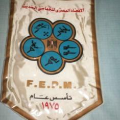187 Fanion - F.E.P.M. (EGYPT? -PENTATLON)(scriere araba)