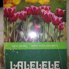 LALELELE - ELENA SELARU, MARIA ELENA CEAUSESCU - Carte de aventura