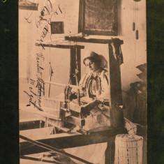 TESATOARE DIN SALISTE - ANUL 1905