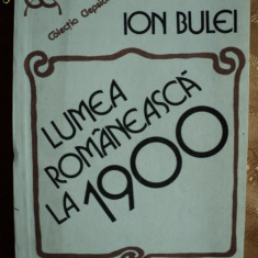 LUMEA ROMANEASCA LA 1900 - ION BULEI - Roman istoric