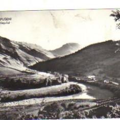 Bnk cp muntii apuseni - valea ariesului - circulata 1962