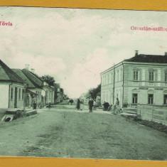 TEIUS 1916 (T)