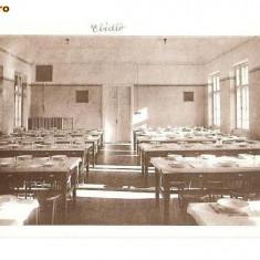 CP190-58,, MARIANUM