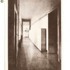 CP190-65,, MARIANUM