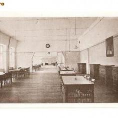 CP190-64,, MARIANUM