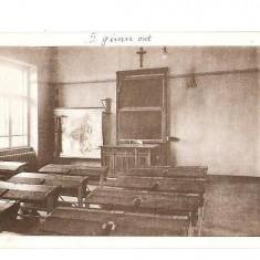 CP190-57,, MARIANUM