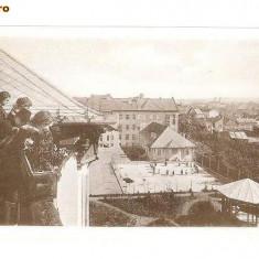 CP190-59,, MARIANUM