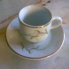 Set 6 cesti micute penru cafea, ceai sau tuica, APULUM, NOU - Ceasca