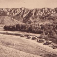 B14818 Valea Ariesului