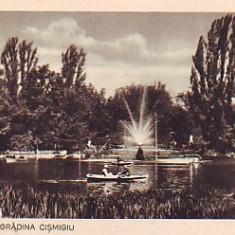 Ok-0787- Romania, Bucuresti, c.p. necirculata apr.1936: Gradina Cismigiu, animat