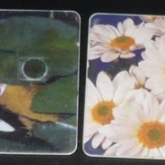 2 CARTELE DE TELEFON ROMTELECOM. FLORI - Cartela telefonica romaneasca