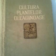 CULTURA PLANTELOR OLEAGINOASE ~I.A. MINCHEVICI & V.E. BOROCOVSCHI - Carti Agronomie