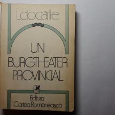 Un Burgtheater Provincial de Livius Ciocarlie - Biografie