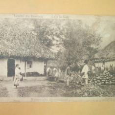 Carte postala Salutari din Romania Casa la tara 1924
