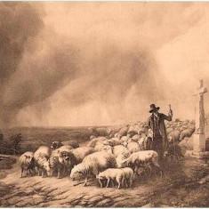 V FOTO 59 Pastor cu oile(cioban), podet, cruce -sepia -antebelica - Fotografie