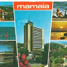 Carte postala(ilustrata)-MAMAIA(1)