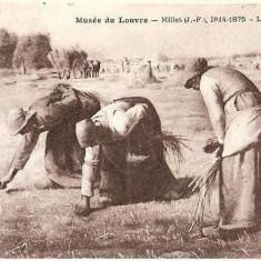 V FOTO 58 Les Glaneuses - de Millet, 1814-1875 -Taranci la recoltat cereale, o caruta in plan secund -antebelica - Fotografie