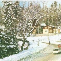 CP199-62 Sinaia. Vila,, Albina