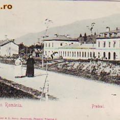 Salutari din Ro, Predeal, carte postala UPU necirculata apr.1902: Promenada, anim - Carte Postala Transilvania pana la 1904, Fotografie