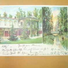 Carte Postala Litografie Buzias