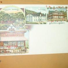 Carte Postala Litografie Salutari Govora Magazin Orolegerie