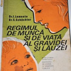 Programul de viata al gravidei si al lauzei, anticariat - Carte Ghidul mamei