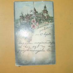 Carte Postala Litografie Salutari din Sinaia Peles