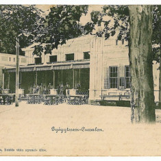 1605 - Litho, Banat, BUZIAS, Restaurant terrace - old postcard - used - 1902