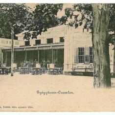 1605 - Litho, Banat, BUZIAS, Restaurant terrace - old postcard - used - 1902 - Carte Postala Banat pana la 1904, Circulata, Printata