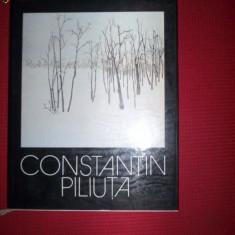Constantin Piliuta album de pictura - Album Arta