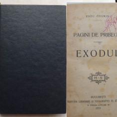 Radu Cosmin, Pagini de pribegie, Exodul, amintiri din razboi, 1919 - Carte Editie princeps