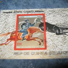 colita timbre cai guineia 74