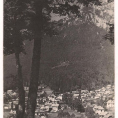 Carte postala(ilustrata)-BUSTENI-Vedere spre Caraiman