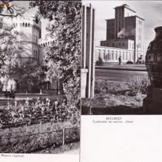VEDERE ANSAMBLU DE 2 VEDERI ROMANIA ;, BUCURESTI-TIMISOARA- AVED 30 - Carte Postala Muntenia dupa 1918