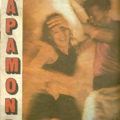 Revista MAPAMOND - Nr. 2 - 1990 - Revista culturale