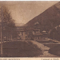 Carte postala-BAILE SLANIC-MOLDOVA-cazinoul si aleele principale