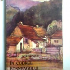 BANAT/CARAS-D. IZVERNICEANU-IN CODRUL BOSNEAGULUI(MOLDOVA NOUA),TIMISOARA