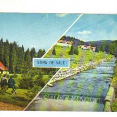 Bnk cp STANA DE VALE - circulata - Carte Postala Crisana dupa 1918