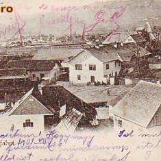 Romania, Topanfalva, Campeni Alba, carte postala circulata 1901: Detaliu, animat - Carte Postala Transilvania pana la 1904, Fotografie